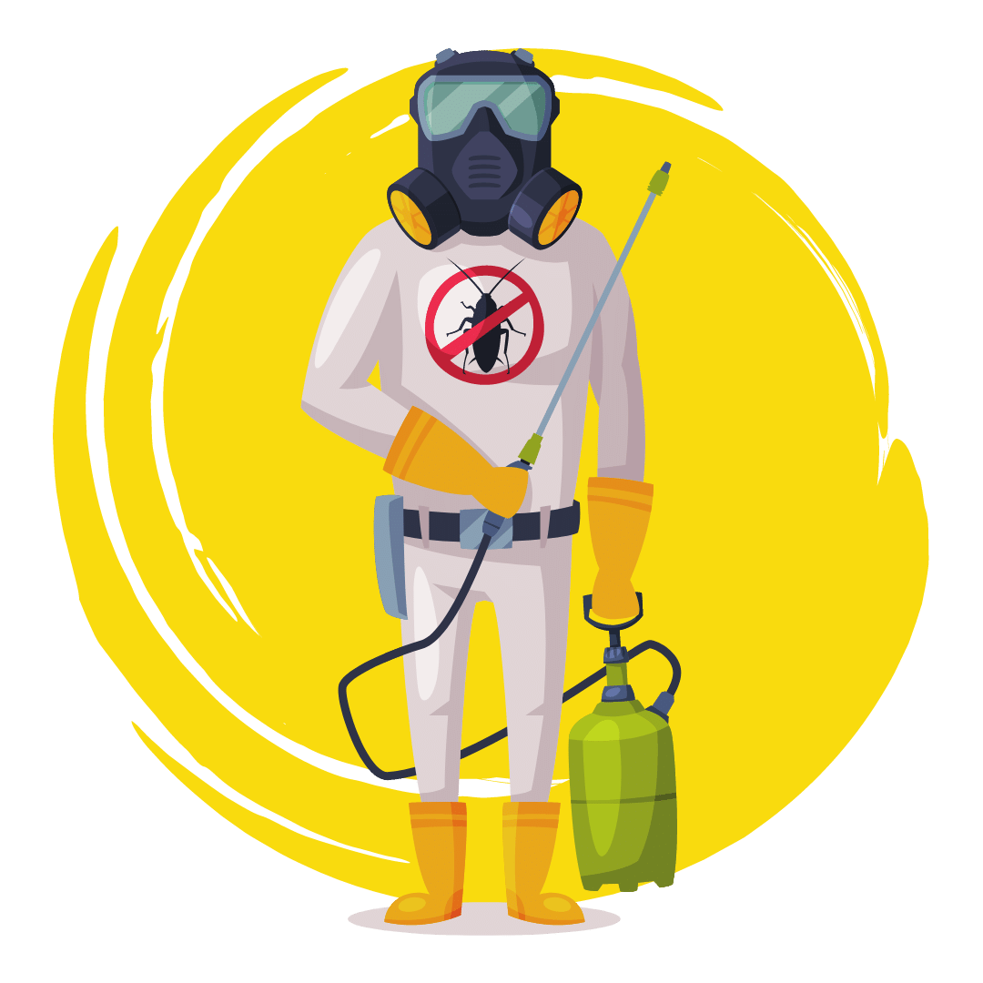 Pre-purchase Pest And Termite Inspection