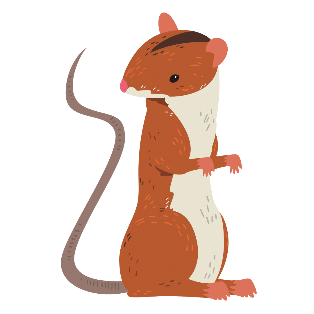 Rodent Control The Vines
